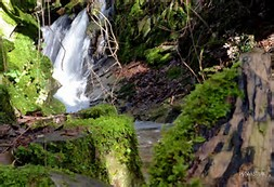 Cascada de Seimeira
